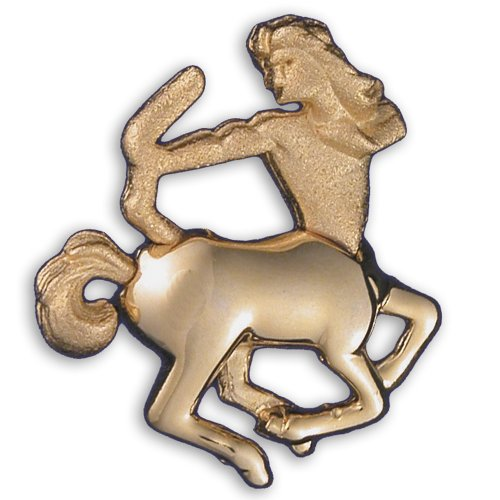Zodiac Brooch Gold Finish - Sagittarius