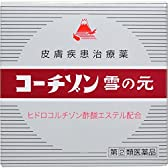 【指定第2類医薬品】コーチゾン雪の元 6g