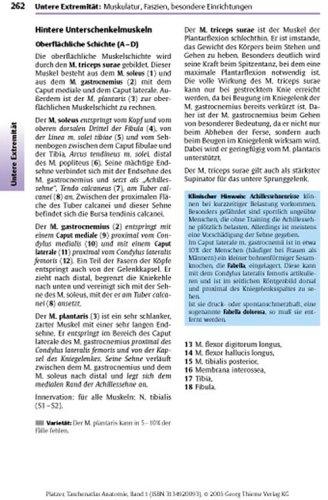 Taschenatlas Anatomie. in 3 Bänden: Taschenatlas der Anatomie 1. Bewegungsapparat: BD 1