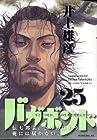 バガボンド 第25巻 2007年03月23日発売