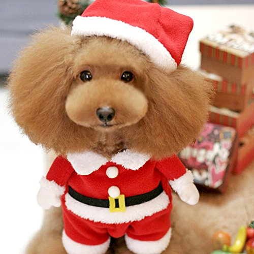 Moolecole Cawaii Pet Clothes Christmas Clothes for Dogs Christmas ...