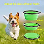 Comsun 2-pack Collapsible Dog Bowl, Food Grade Silicone BPA Free FDA Approved, Foldable Expandable Cup Dish for Pet Cat Food Water Feeding Portable Travel Bowl Blue and Green Free Carabiner ¡­ from COMSUN