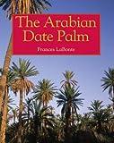 Arabian Date Palm