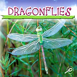 Dragonflies Audiobook