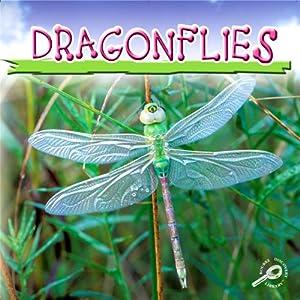 Dragonflies | [Jason Cooper]
