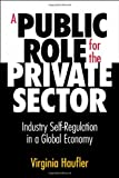 A Public Role for the Private Sector: Industry Self-Regulation in a Global Economy