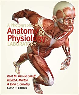 anatomy and physiology saladin 7th edition lab manual