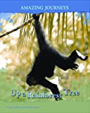 img - for Up a Rainforest Tree (Amazing Journeys) book / textbook / text book