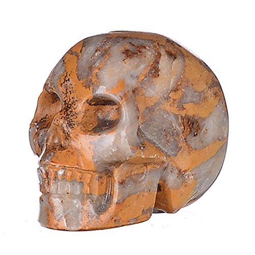 "Mineralbiz 1.5"" Natural Indonesia Petrified Fossil Hand Carved Crystal Skull, Human Skull Head, Pocket Skull, Skull Carving, Crystal Gemstone Healin"