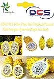 (029)10 PCS Yellow Pitaya Fruit Trees Seeds Perennial Plants Non-gmo Hylocereus Dragon Fruit Seeds