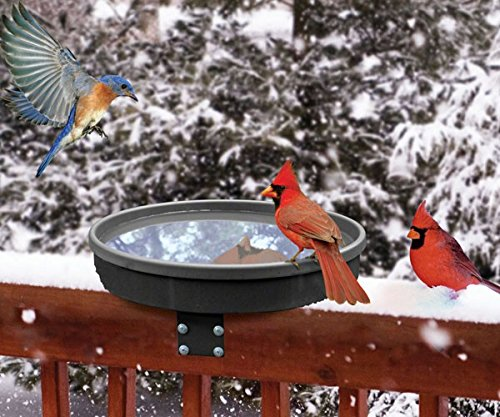 Songbird Essentials SE995 Songbird Spa (Heated Bird Baths compare prices)