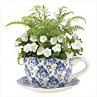 Gifts & Decor Blue Floral Teacup Saucer Decorative Garden Planter