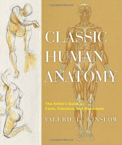 Classic Human Anatomy: The Artist's Guide to Form,...
