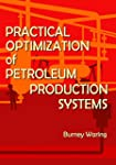 Practical Optimization of Petroleum P...