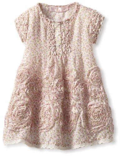 0d0ece8d0 Biscotti Baby Girls Infant Meadowsweet Dress Pink 24 Months - Summer ...