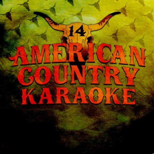 Today's Top Country Karaoke Hits, Vol. 14