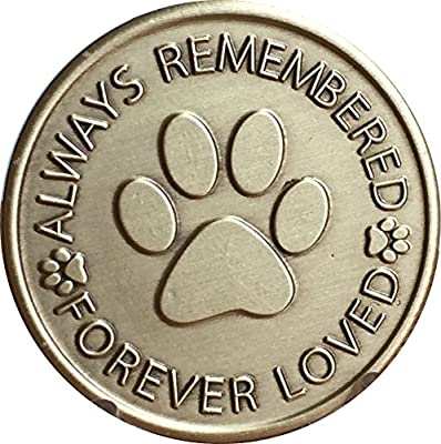 Engraved Pet Name Always Remembered Forever Loved Memorial Paw Prints On Your Heart Medallion