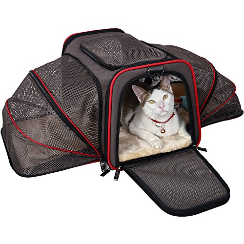 Petsfit 19x12x12 Inches Expandable Foldable Washable Travel Carriers, Airline Approved Pet Carrier Soft-sided(Two Extension)