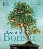 img - for Beautiful Bonsai by Delmer, Bruno (2004) Hardcover book / textbook / text book