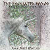 The Enchanted Wood - A Guided Meditation for Hope and Prosperity