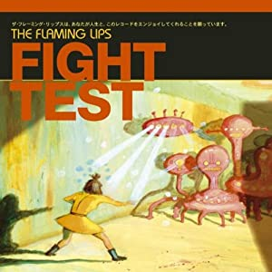 Fight Test- Maxi
