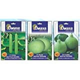 SUPER BOTTLE GOURD COMBO 3TYPES LONG , ROUND AND LATTU-BULB SHAPE 3PKTS X 3GM EACH BRAND Omaxe Sold By Super Agri...