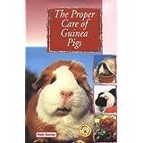 The Proper Care of Guinea Pigs ~ Peter Gurney