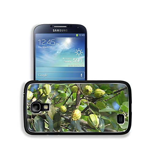 Luxlady Premium Samsung Galaxy S4 Aluminum Backplate Bumper Snap Case Garcinia Cambogia Malabar Tamarind Image 343524