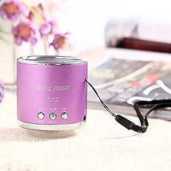 DMYI Z12 Wireless Speaker Amplifier FM Radio USB Micro SD TF Portable Mini Speakers MP3 MP4 Computer Card Music Player(Purple)