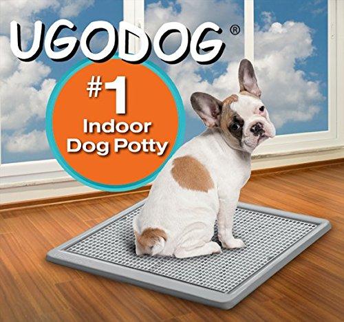 UGODOG Indoor Dog Potty New | eBay