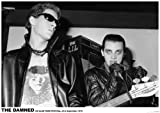 DAMNED 100 CLUB LONDON PUNK FESTIVAL 1976 33 X 23 INCHES POSTER