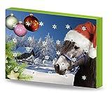 Kerbl Adventskalender f�r Pferde