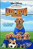 echange, troc Air Bud: World Pup [Import anglais]