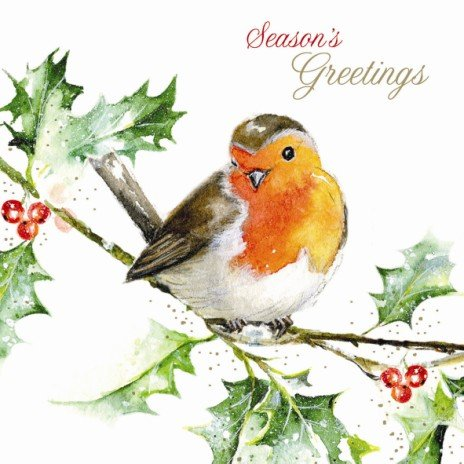 weihnachtskarte-little-red-robin-christmas-greetings