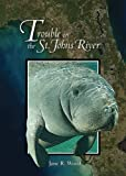 Trouble on the St. Johns River (Mom's Choice Awards Winner 2009) [Paperback]