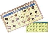 地球スペシャル標本 資源 (鉱石) コレクション 21種類