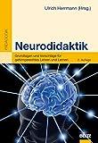 Image de Neurodidaktik: Grundlagen und Vorschläge für gehirngerechtes Lehren und Lernen (Beltz Pädagogik)