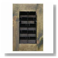 BrightGreen BGWM8W Living Wall Planter Kit with Frame, Dark Walnut