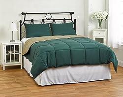 Cozy Beddings Reversible Down Alternative 2 Piece Comforter Set, Twin/Twin XL, Sage/Hunter Green
