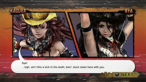 Onechanbara Z2: Chaos  screenshot