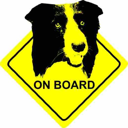 border-collie-dog-voiture-autocollant-car-sticker-sign