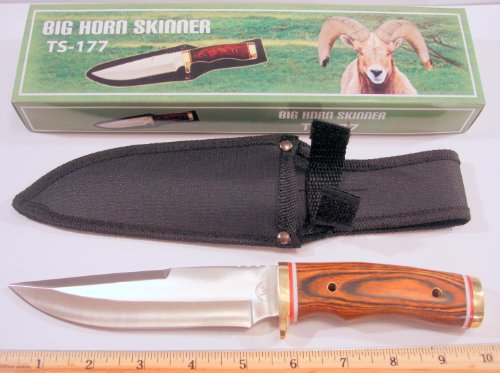 """Trophy Stag 9-3/4"""" Lg. """"Big Horn Skinner"""" Fixed Blade Knife - 5-1/2"""" S.S. Blade With Black Nylon Sheath With Belt Loop"""