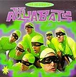 The Return of the Aquabats!