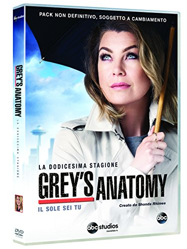 grey's anatomy - season 12 (6 dvd) box set DVD Italian Import