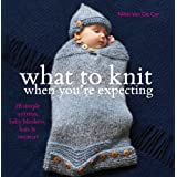 What To Knit When You're Expecting: 28 Simple Mittens, Baby Blankets, Hats & Sweatersby Nikki Van De Car