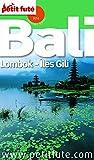 Bali 2014 Petit Fut� (avec cartes, photos + avis des lecteurs): Lombok - �les Gili