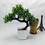 Artificial Plants Guest Greeting Pine Bonsai home decoration by Ebow