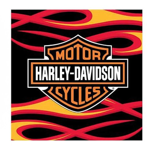 Harley Davidson, Flames 39-Inch-by-59-Inch Tufted Rug by The Northwest Company - Harley-Davidson