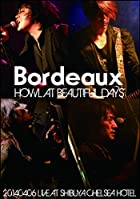 HOWL AT BEAUTIFUL DAYS -20140406 LIVE AT SHIBUYA CHELSEA HOTEL- [DVD](����ȯ�䡡ͽ���)