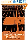 Private Prisons in America: A Critical Race Perspective (Critical Perspectives in Criminology)